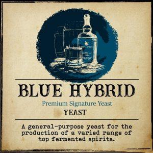 Distillers yeast